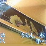 九州新幹線「つばめ」