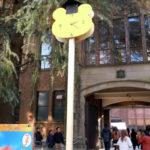 風景いろいろ 大学祭(2)