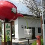 鹿児島旅行の思い出(3) 指宿~枕崎~知覧~鹿児島市内